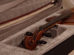 Moje housličky