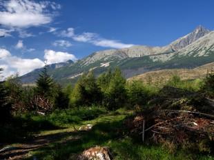 Pohled na Lomnický štít